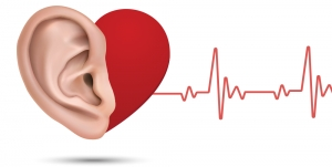 Getting to the Heart of the Matter: Hearing Loss and Cardiovascular Disease